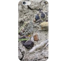 Young and Camouflaged (Grasshopper) iPhone Case/Skin