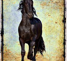Conqueror by Jean Hildebrant