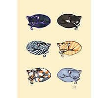 Watercolor Kitties Photographic Print