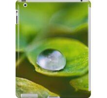 Rain iPad Case/Skin
