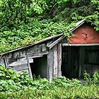 All It Needs Is A Door by Vickie Emms