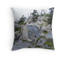 """No Climbing"" Throw Pillow"