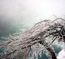Niagara on Ice by Natasha M