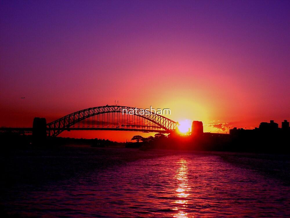 Sydney Harbour Sunset by Natasha M