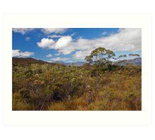 Pristine, SW Tasmania Art Print