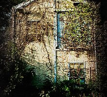 Derelict  by Richard Hamilton-Veal