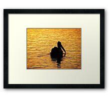 Sunset Pelican Framed Print