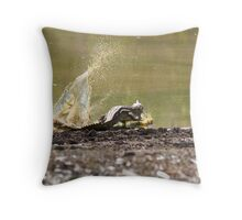 Cape York- Fresh Water Crocodile Throw Pillow