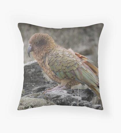 NZ, South Westland- Kea Throw Pillow