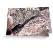 Stanthorp Lizard Greeting Card
