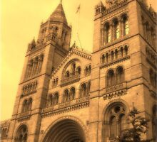 Natural History Museum, London by Dana Kay