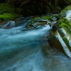 Barrington Rapids - Barrington Tops NP, NSW by Malcolm Katon