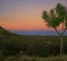 Sunset Wallaby Gap by kateabell