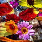 Water Petals by BrianDawson