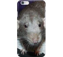 bog roll rat iPhone Case/Skin