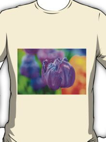 Tulips Enchanting 67 T-Shirt