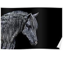 Portrait Of A Horse Fine Art Print Poster