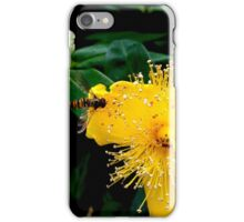 Sunshine Yellow, Bee Black & Orange iPhone Case/Skin