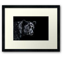 Portrait Of A Bear Fine Art Print Framed Print