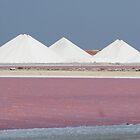 Salt Bonaire by Dirk van Laar