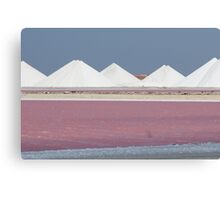 Salt Bonaire Canvas Print