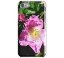 The Hollies Pink iPhone Case/Skin