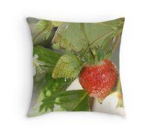 strawberry Throw Pillow
