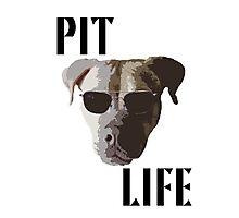 Pit Life Photographic Print