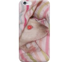 Daisy rat has a bed day iPhone Case/Skin