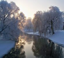 Winter river with morning sun by lantica