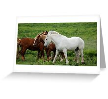 Running with Draft Horses Greeting Card