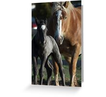 Molly Belle & Promise Greeting Card