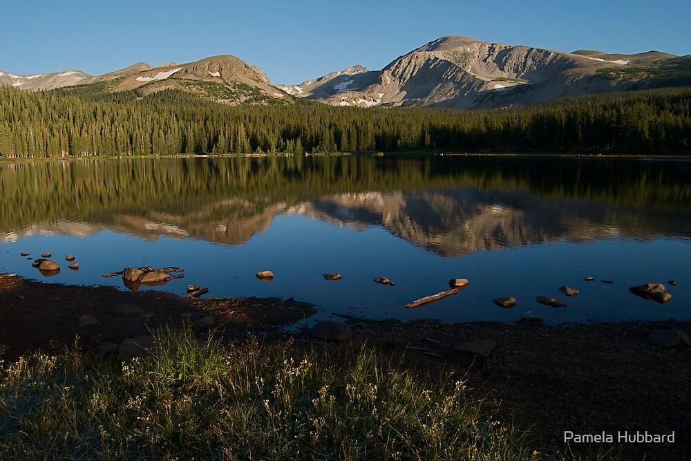 Reflections of Mount Audubon  by Pamela Hubbard
