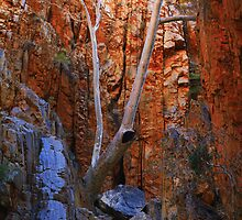 Standley Chasm, Northern Territory-Australia by kateabell