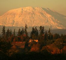 Mt St. Helens by Randy Richards
