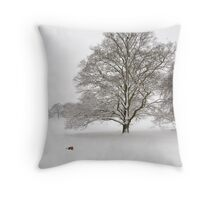 Oxfordshire In Snow Throw Pillow