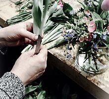 Katherine's Hands by Barbara Wyeth