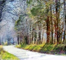 Country Road Through Forest by Jean Gregory  Evans
