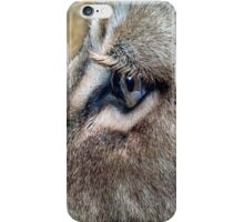 Eye of the Lion iPhone Case/Skin