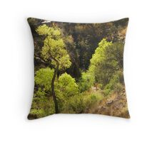 Springtime Cottonwood Throw Pillow