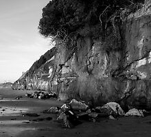 """Encinitas Beach Looking North In  B&W"" by Tim&Paria Sauls"