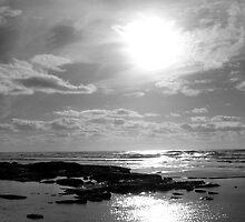 """Sunshine"" in Black & White by Tim&Paria Sauls"