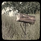"""Rural Delivery Triptych - """"faux"""" TTV by Patrick Hickey"""