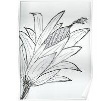 Black & white corn Poster