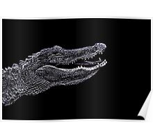 Alligator Portrait Fine Art Print Poster