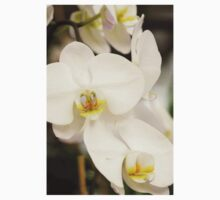 Orchid #2 Kids Clothes