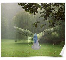 Pegasus and Nymph Poster
