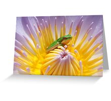 Water lily and friend Greeting Card