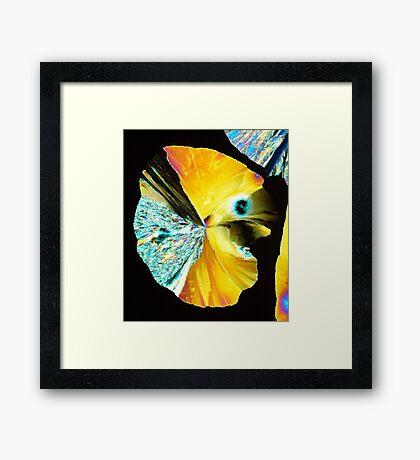 Crystal Pacman Framed Print