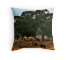 This Land is Your Land Throw Pillow